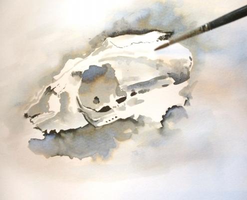 Schedel 1 (penseel en parkerinkt)